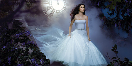 Enchanted Animated Wedding
