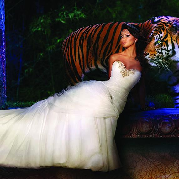 Alfred Angelo Jasmine wedding dress