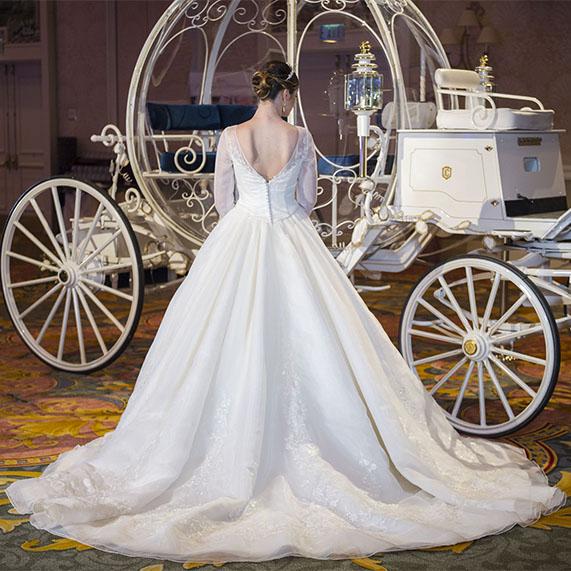 Disney Cinderella Movie Wedding Dress Deluxe