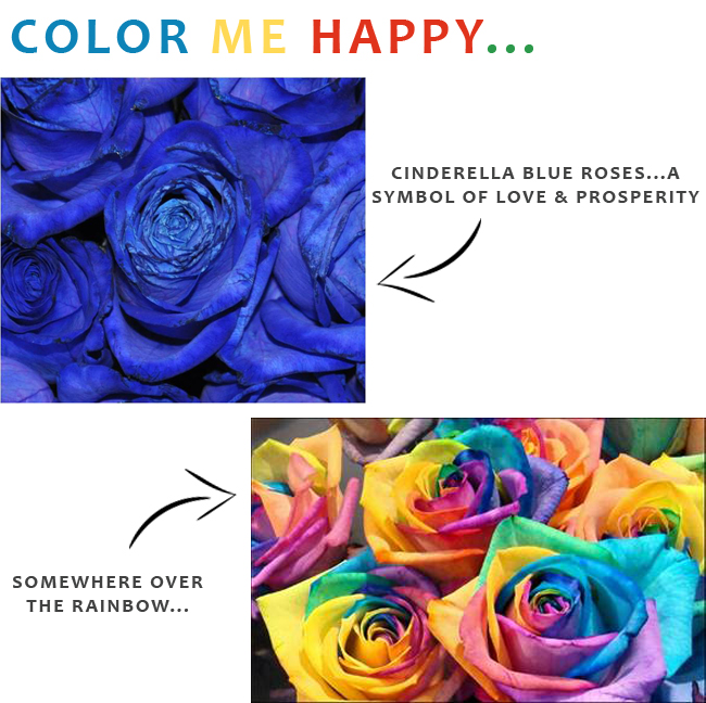 A twist on the traditional rose disney weddings for How to make a multicolored rose