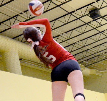 <h2>VOLLEYBALL</h2>