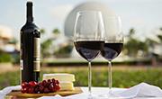 Disney Wine & Dine Half Marathon Weekend Expands Menu