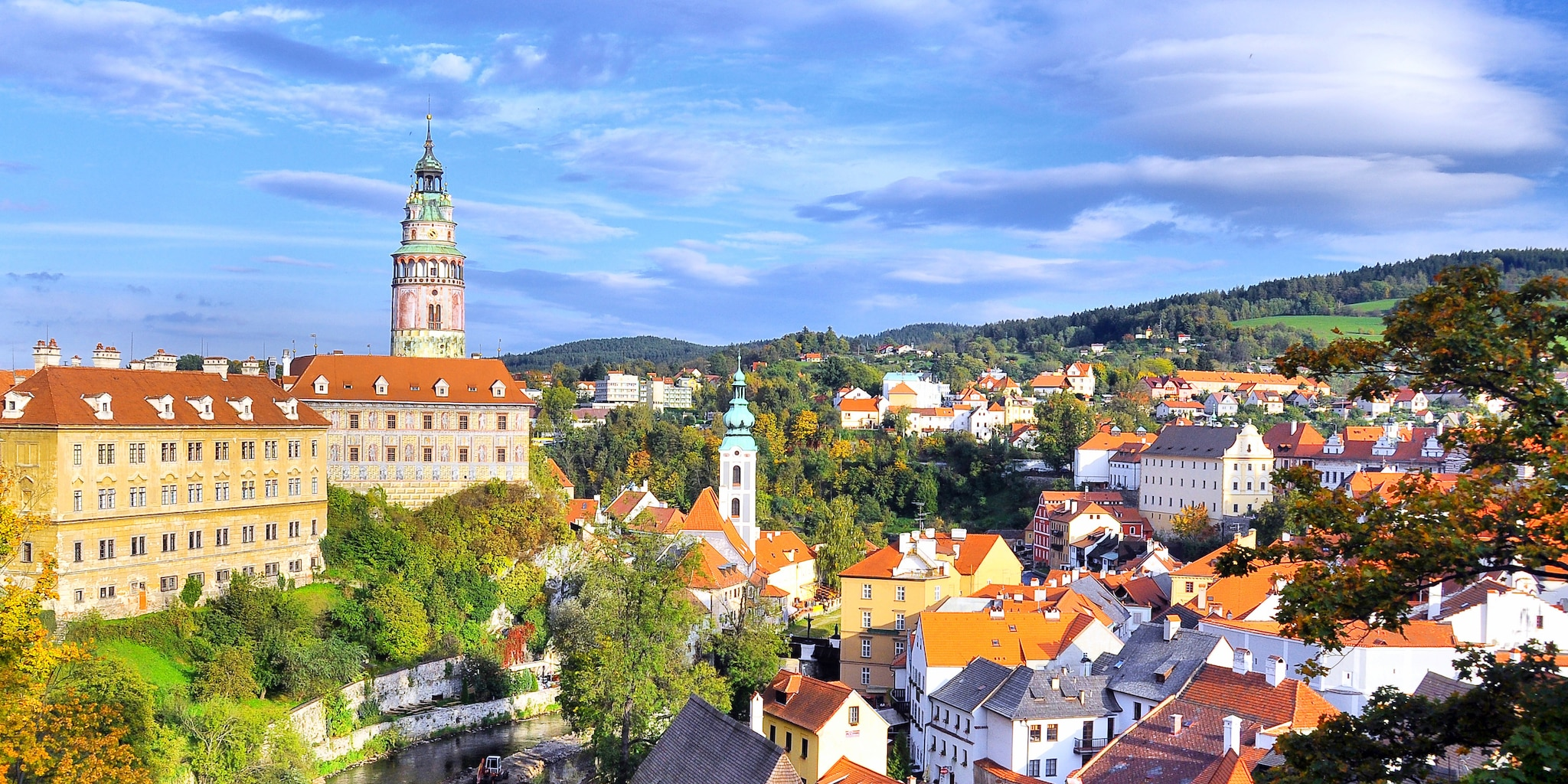 A cathedral looms over a church and other buildings in a picturesque European town