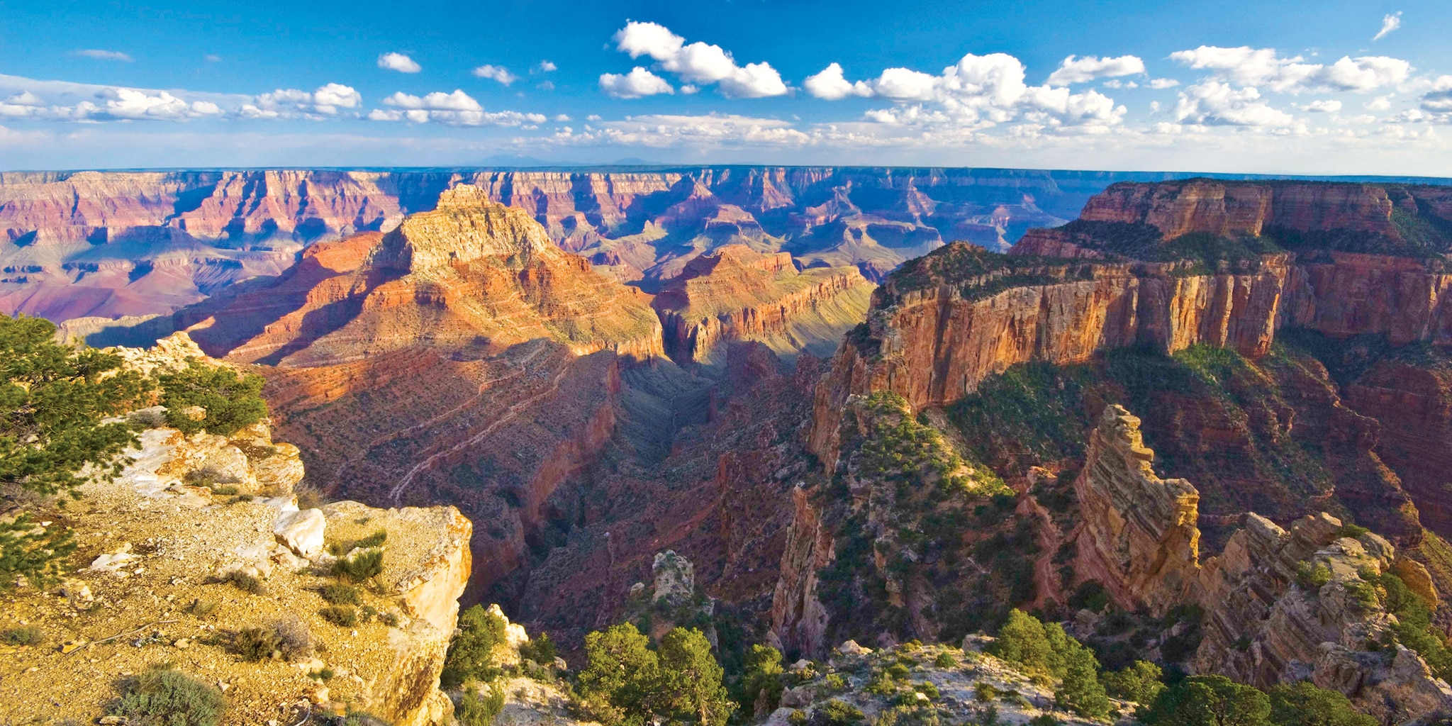 The panoramic landscape of the Grand Canyon's South Rim