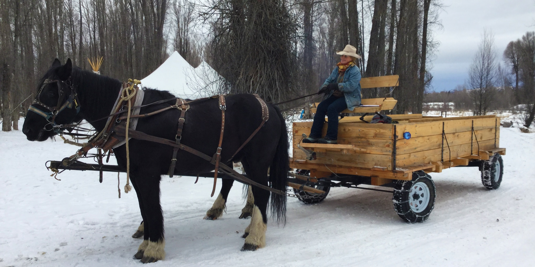 Take your family on an old-fashioned sleigh ride!