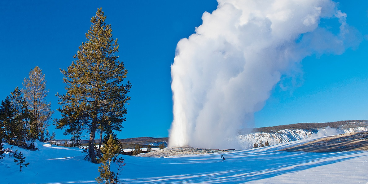 Old Faithful erupts through a blanket of snow